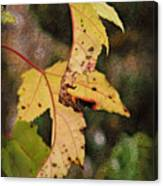 Leaves And Autumn Canvas Print