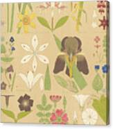 Leaves And Flowers From Nature Canvas Print