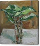 Leaves In A Tall Glass Canvas Print