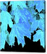 Leaves In Blue Canvas Print