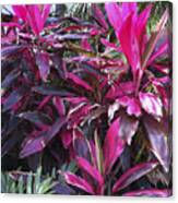 Leaves Of Pink Canvas Print