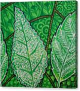 Leaves Of Spring Canvas Print