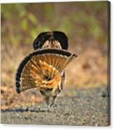 Leaving The Scene Grouse Canvas Print
