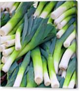 Leeks At The Farmer's Market Canvas Print