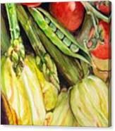 Legumes Canvas Print