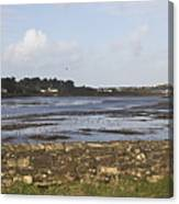 Lelant Water Hayle Estuary Canvas Print