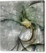 Lemniscatic Fancy  Id 16098-021154-72820 Canvas Print