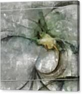 Lemniscatic Fancy  Id 16098-021154-72823 Canvas Print