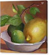 Lemon And Limes Still Life Canvas Print