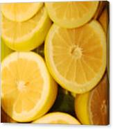 Lemon Still Life Canvas Print