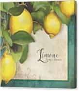 Lemon Tree - Limone Citrus Medica Canvas Print