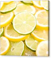 Lemons And Limes Abstract Canvas Print