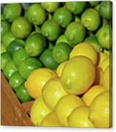 Lemons And Limes At Market Canvas Print