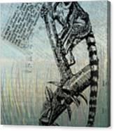 Lemur Catta Canvas Print