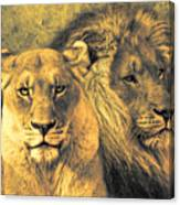 Leones Canvas Print