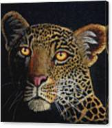 Leopard In The Dark Canvas Print