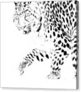 Leopard Spots Black And White Canvas Print