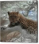 Leopard Tree Hugger Photo Collage Canvas Print