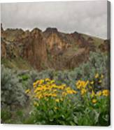 Leslie Gulch Sunflowers Canvas Print
