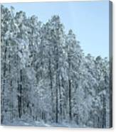 Let It Snow 3 Canvas Print