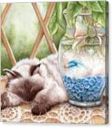 Let Sleeping Cats Lie Canvas Print