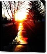 Let The Sun Light Your Path Canvas Print