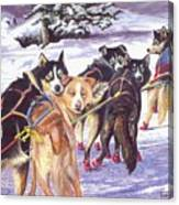 Let's Go Musher Canvas Print
