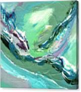 Levee Breach Canvas Print