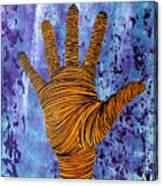 Lib-488 Canvas Print