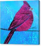 Lib-577 Canvas Print