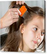 Lice In Head Canvas Print