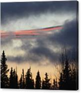 Licorice In The Sky Canvas Print