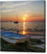 Life In Florida Canvas Print