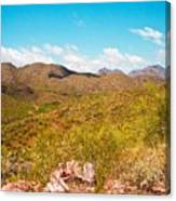 Life In The Southwest Canvas Print