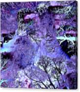 Life In The Ultra Violet Bush Of Ghosts  Canvas Print