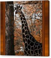 Life Is Standing Tall Canvas Print