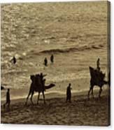 Life Near The Arabian Sea Canvas Print