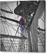 Life On The Ropes Canvas Print