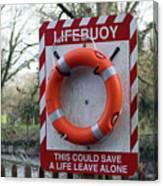 Lifebuoy Theft Canvas Print