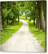 Life's Path Canvas Print