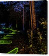 Lighit Painted Forest Scene Canvas Print