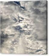 Light And Dark Canvas Print