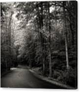 Light And Shadow On A Mountain Road In Black And White Canvas Print