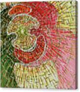 Light Dance Canvas Print