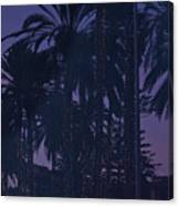 Light Decorated Palm Trees On Paseo Maritimo Canvas Print