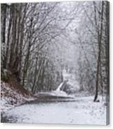 Light Dusting Of Snow Canvas Print