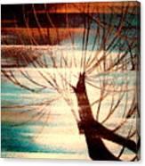 Light Melody Canvas Print
