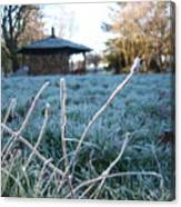 Light Morning Frost Canvas Print