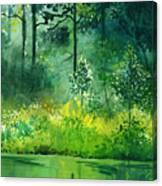 Light N Greens Canvas Print