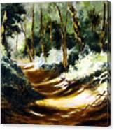 Light N Shade Canvas Print